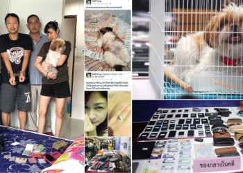Un couple thaïlandais utilisait un chien pour distraire et dérober ses victimes
