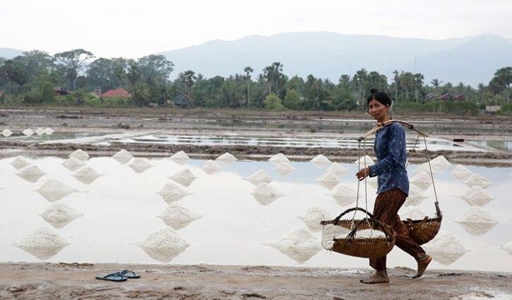 Une femme récolte du sel dans la province de Kampot au Cambodge
