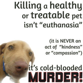 "The myth that is ""pet overpopulation"" has been DISPROVEN. ALL healthy/treatable Pets CAN and SHOULD be saved. No Kill is the way to save them. www.nokilladvocacycenter.org"