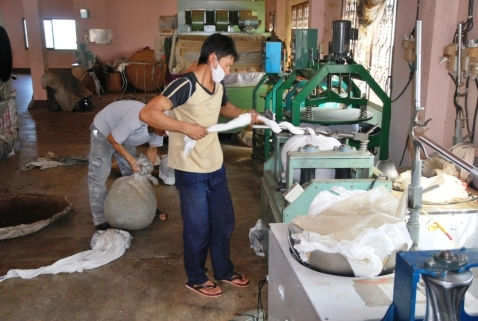Doi Mae Salong tea factory