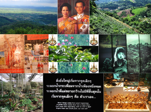 Doi Tung Tea, featured picture, collage
