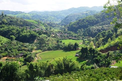 """""""Tea Village"""" Ban Si Phan Rai, Doi Tung, North Thailand"""