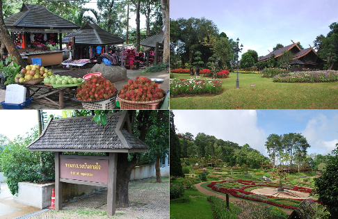 Royal Development Project Doi Tung, Project Center, Tourist Attractions