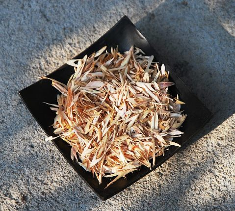 Thai Lemongrass herbal infusion, close-up