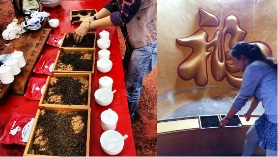 More tea tasting at the Doi Mae Salong tea school