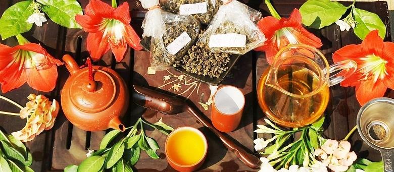 Fresh spring Oolong tea degustation, north Thailand 2014