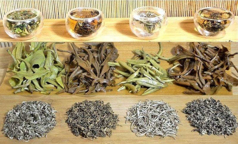 4 Ancient Snow Shan Teas from Vietnam - green tea, black tea, Snow Shan silver needle and Pai Hao Vietnam tea