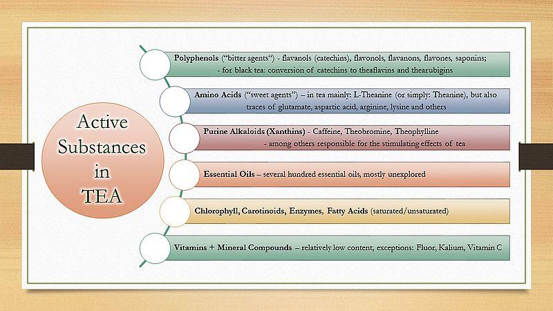 Active substances / active ingredients in tea