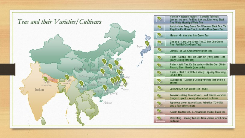 Teas and their Varieties and Cultivars