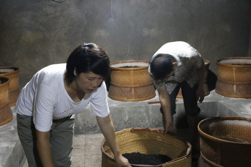 Roasting tea leaves over charcoal fire at the Chen family's tea factory in Wuyishan