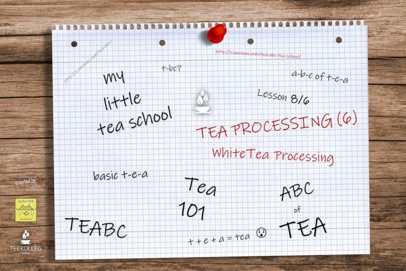 My Little Tea School - The ABC of TEA, Lesson 8.6 : Tea Processing