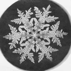 Snowflake Study, 1890, by Wilson A. Bentley, Smithsonian Institution Archives.