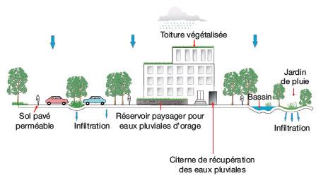 gestion eaux pluviales