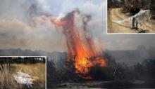 Ketika Tentara Israel Kalang Kabut Karena Layang-layang Api Palestina