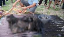 Kebakaran di Padang Pariaman, Sepasang Lansia Hangus Terbakar