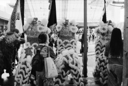 Just a casual shot of some lion dance performance.