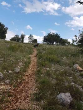 Trekking-Sibenik-2