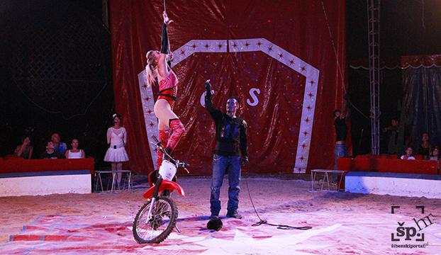 cirkus safari6