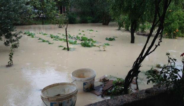 poplava_njivice4