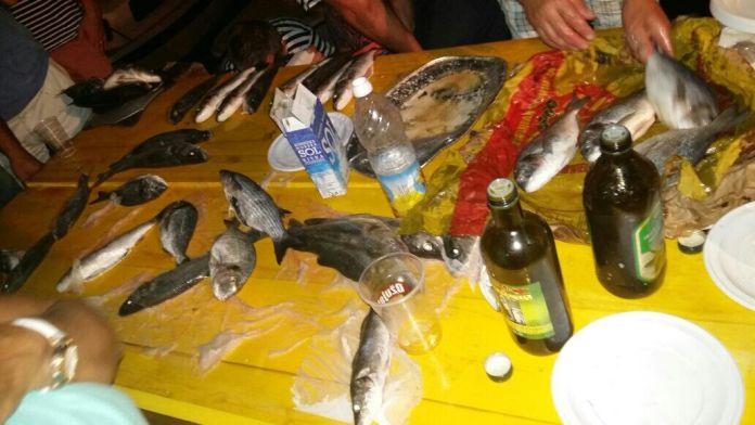 ribarska bilice4