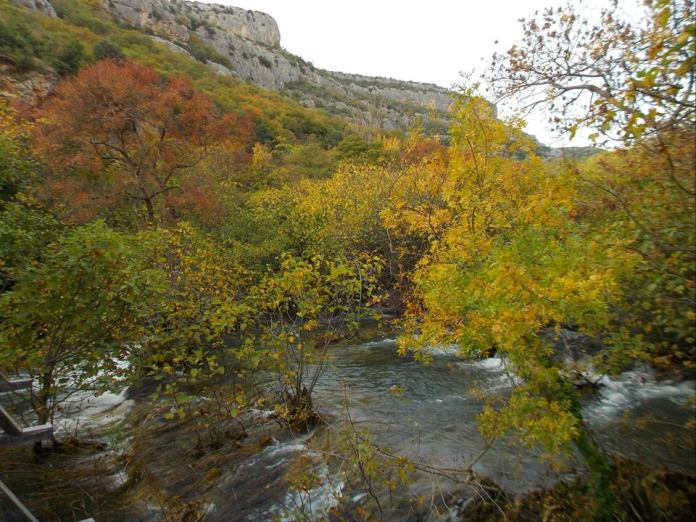 jesen np krka9
