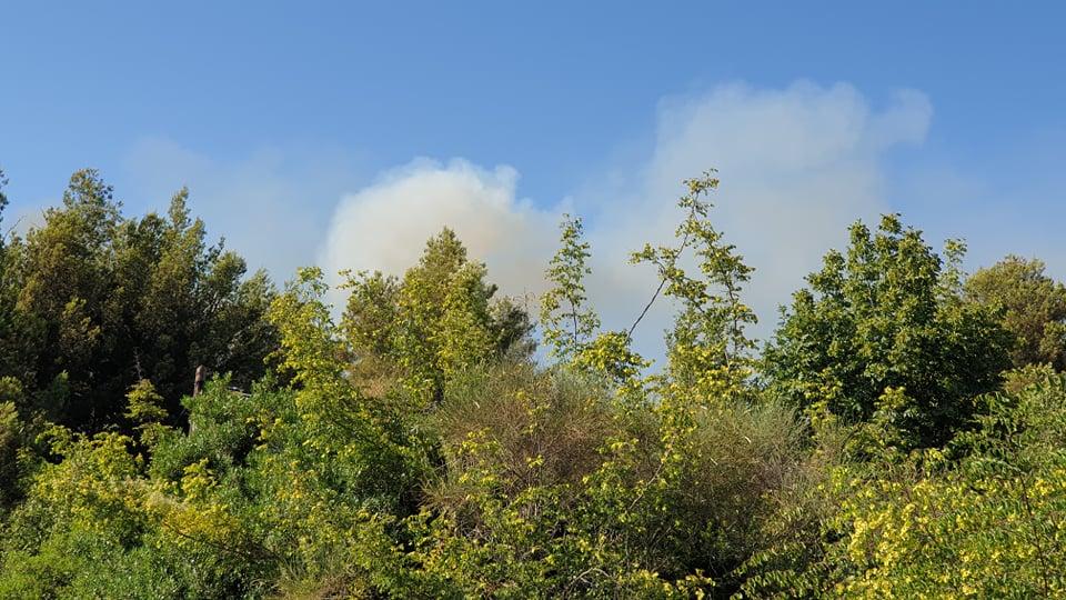 zeleni grad požar (1)