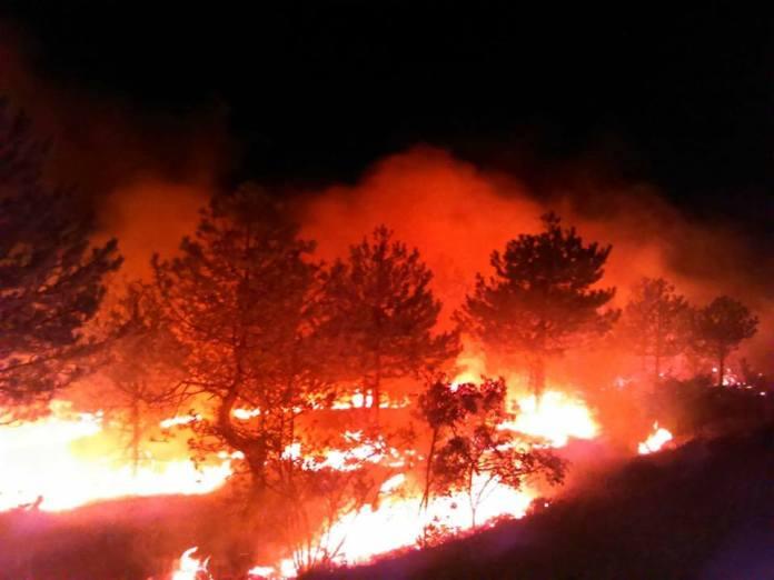 Požar na Svilaji