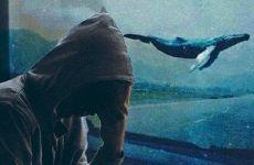 Mavi Balina yüzünden yaşanan intiharlar devam ediyor