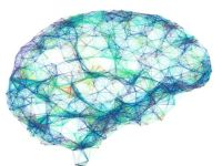 Hatalara rağmen devrimsel bir yenilik: Yapay zeka beyin aktivitelerini metne dönüştürdü