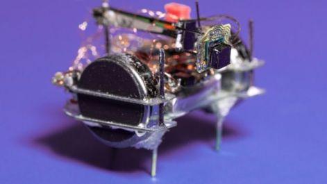 Küçük robot
