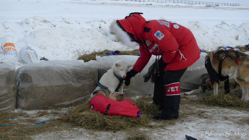 Honda is getting som well deserved lovin' from the vets in Unalakleet