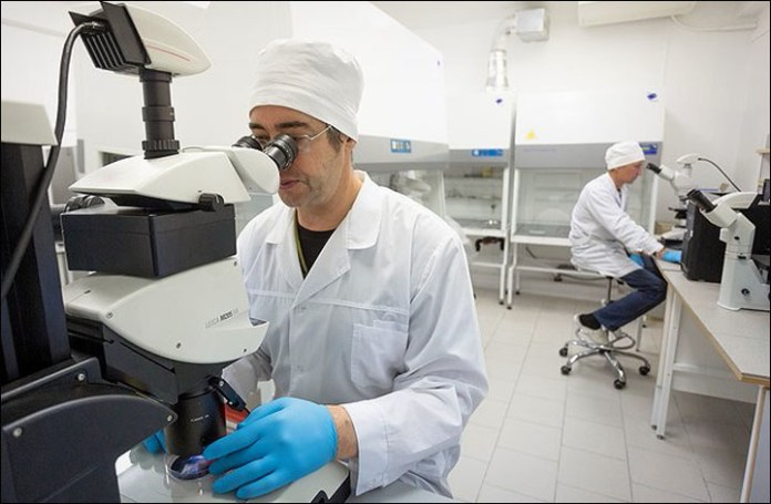 New method of fighting cancer developed by Siberian scientists
