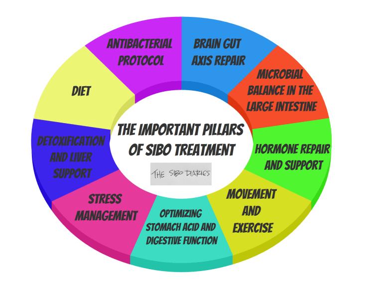 Pillars of SIBO treatment.PNG