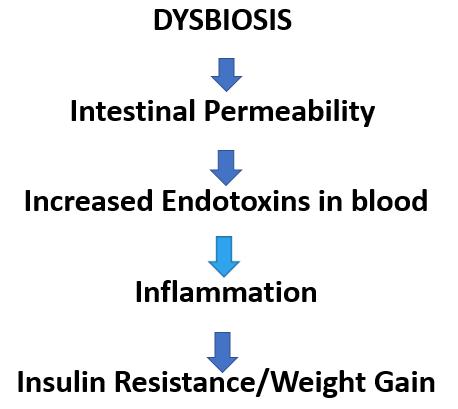 Metabolic endotoxemia