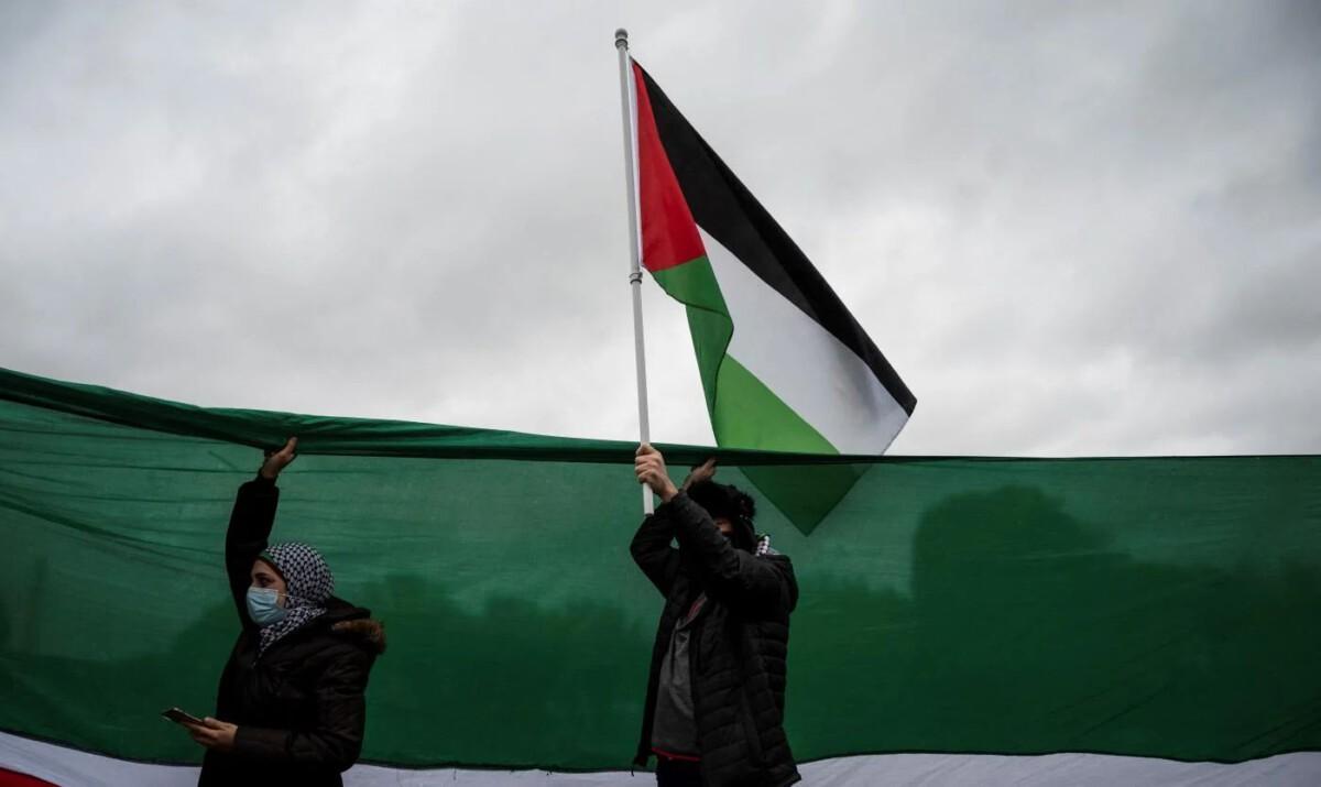 Falk Gaza