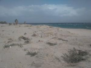 Pilone SPiaggia (5)