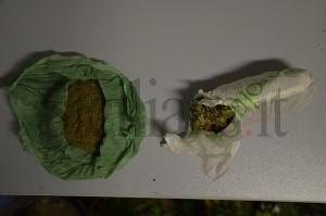 1Polizia_Agrigento_Licata_Marijuana