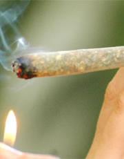 hashish_spinello_canna_marijuana_polizia