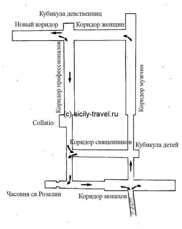 План музея мертвых