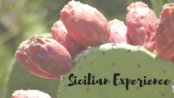 Sicilian Experience 2