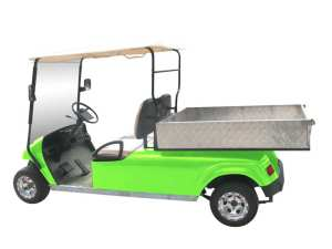 Bintelli Utility Street Legal Golf cart