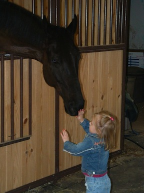 """Avery, with a horse named Paris, at the tender age of two. Although Avery started going to the barn when she was six weeks old, this is when """"it began!"""" Horses were part of her soul.  Photo by Rochelle Costanza"""