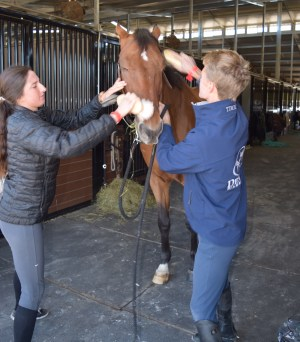 Hot Horsemen Kyle Timm, left, and Marissa Degner get Kyle's co-model ready for the photo shoot.