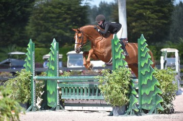 """Becky and Touchdown in the 3'3"""" AO hunters at WEF Photo by The Book LLC"""