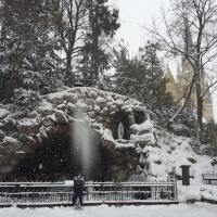 That Remarkable Photo from the Grotto at Notre Dame