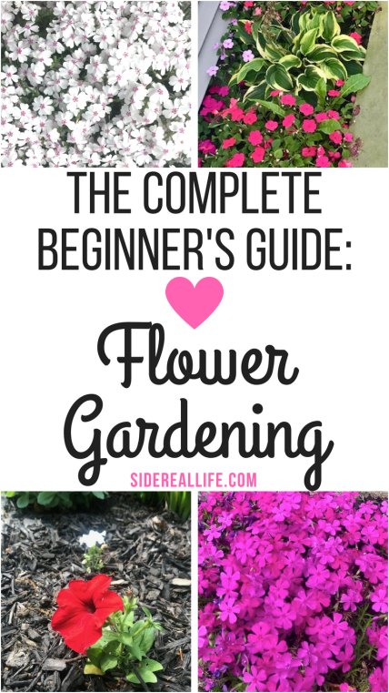 How To Start A Flower Garden For Beginners A Step By Step Guide