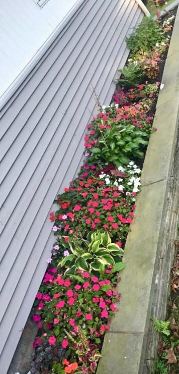 Flower Garden For Beginners