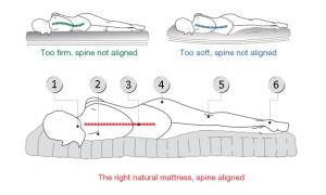 Side Sleepers Spinal Alignment