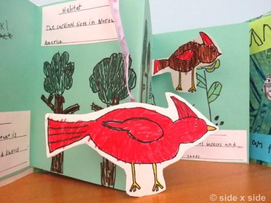 CardinalCharacter