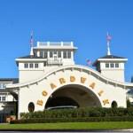 ¡Otros hoteles de Disney World Resort reabrirán pronto!